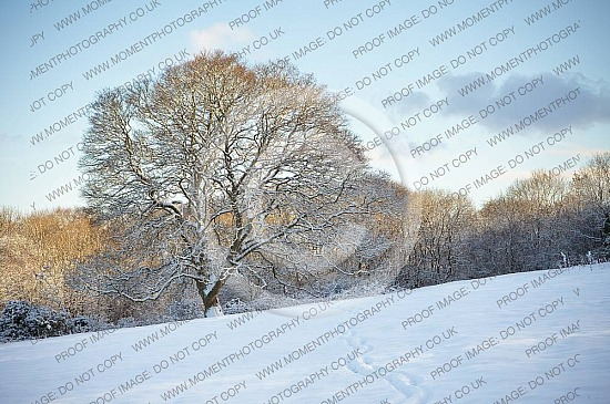 Quantock Hills winter snow