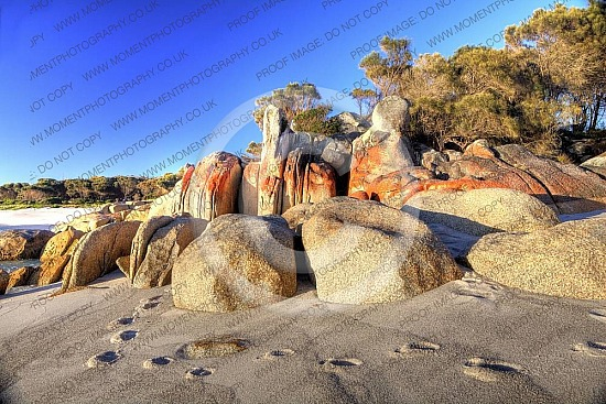 bay of fires footprints hdr beach paradise adventure discovery tranquil beautiful stunning white sand rugged remote castaway deserted footsteps boulders rocks high dynamic range australia exploring explore rock far away alone lonetravel
