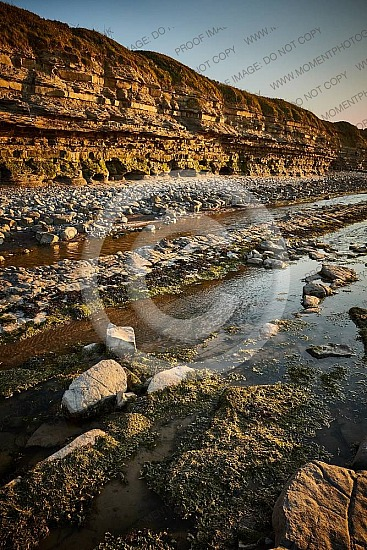 Kilve Beach Somerset 15