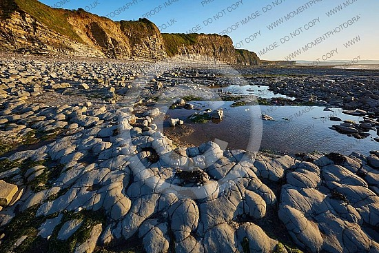 Kilve Beach Somerset 08