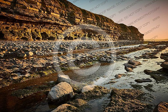 Kilve Beach Somerset 14