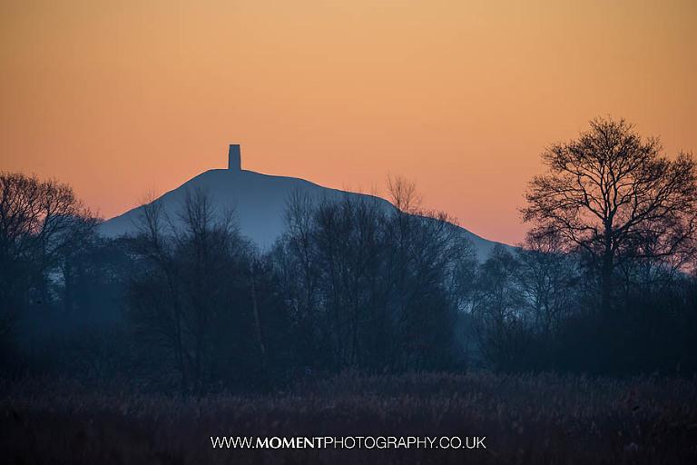 Glastonbury Tor at sunrise from Ham Wall RSPB nature reserve